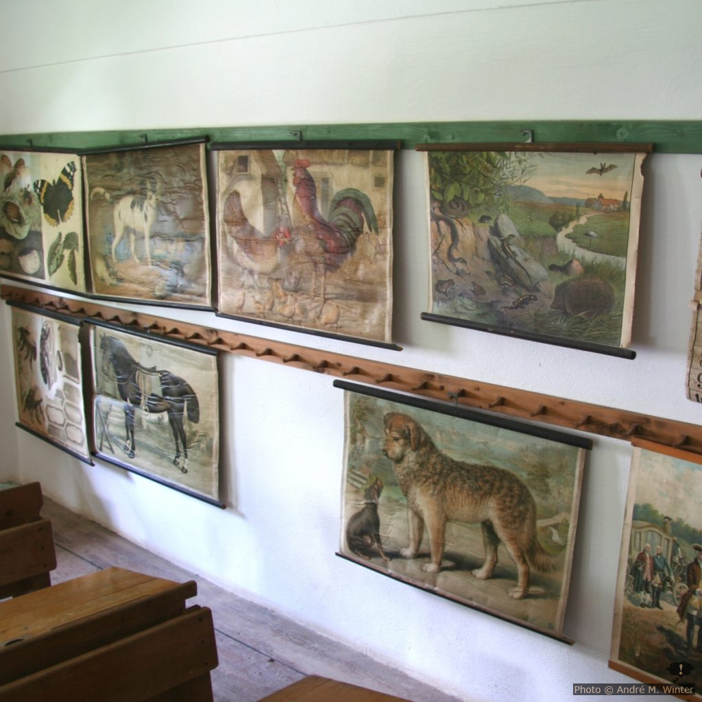 Bildtafeln im Klassenzimmer
