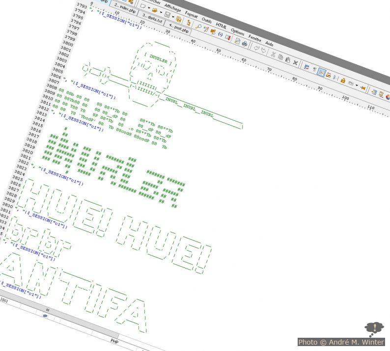 Screenshot einer schädlichen Datei