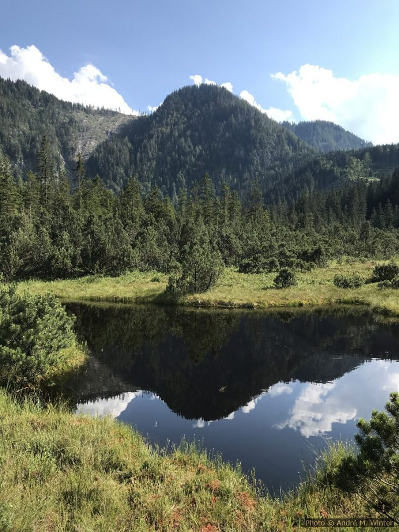 Lac dans la tourbière Leckermoos