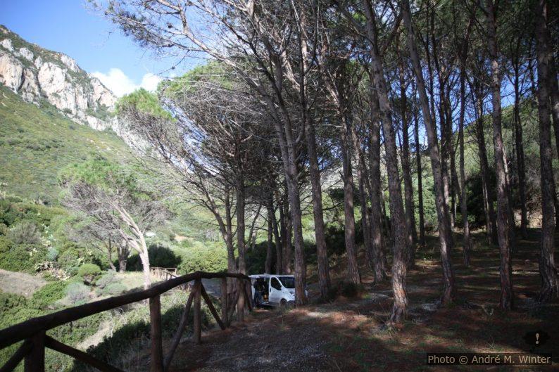 Notre Trafic dans la Pinède de Masua