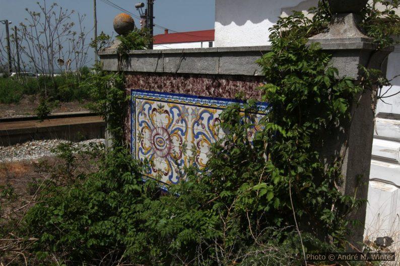 Azulejo multicolore couvert par la végétation rampante