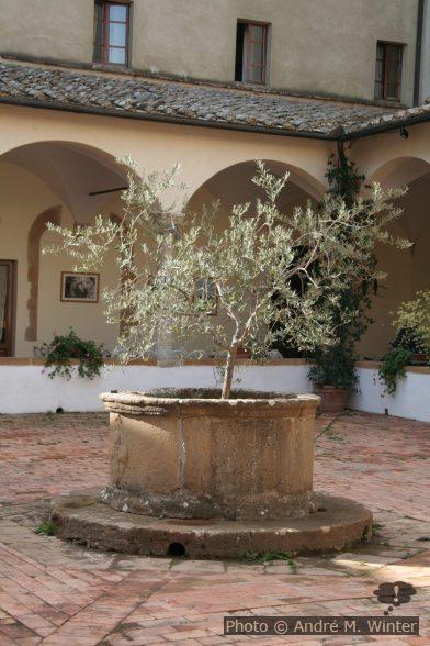 Puits dans la cour du Palazzo Piccolomini